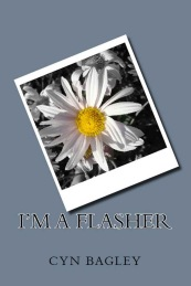 Imaflasher ebook cover