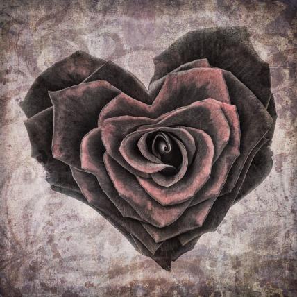 heart-1205291_1920